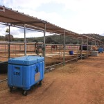 24'x48' Covered Corrals along the East side of Ranch
