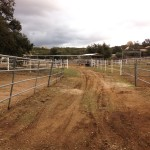 Pathway to 24'x48' corrals along the north-east side of Ranch