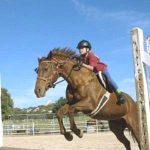 Windfall Ranch - jumping lessons